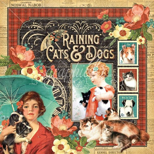 29678 Graphic 45 Raining Cats & Dogs (4500956).
