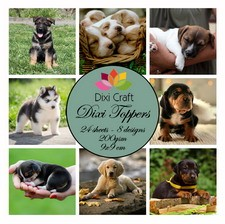 32384 Mini Toppers 9x9 cm Puppys Color 200 grs 24 vel 8 Designs.