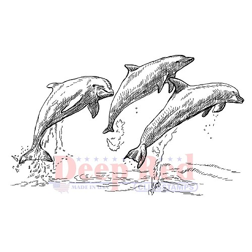36042 Deep Red Cling Stamp Dolphins 6x9 cm.