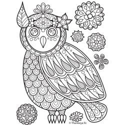 46241 Thaneeya® LLC Iron On Transfers 1/Pkg Owl Side View 20x20 cm.