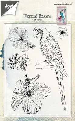 46411 Joy Crafts Clearstamp - Parrot and Flowers  (6410/0459).