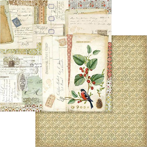 "49545 Stamperia Double-Sided Cardstock 12""X12"" Winter Botanic Postcards (SBB574)."