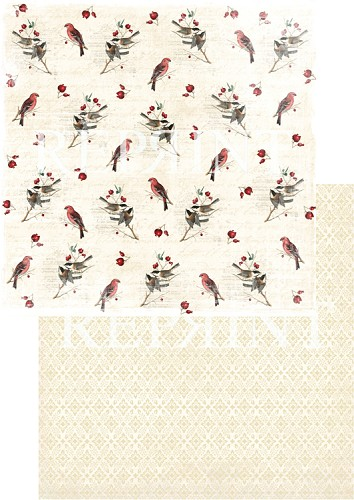 49748 Reprint Nordic Light Collection Patterned Paper 12x12, 200 gm Birds.