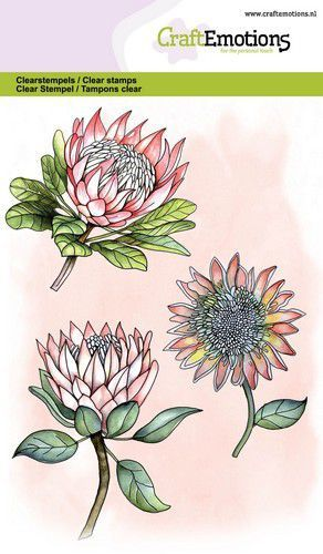 57013 CraftEmotions Clearstamps A6 - Protea 3 Bloemen (130501/1324).