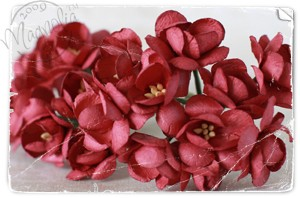 12797 F-CB09 Vintage Red Cherry Blossom{smooth}10 stuks.