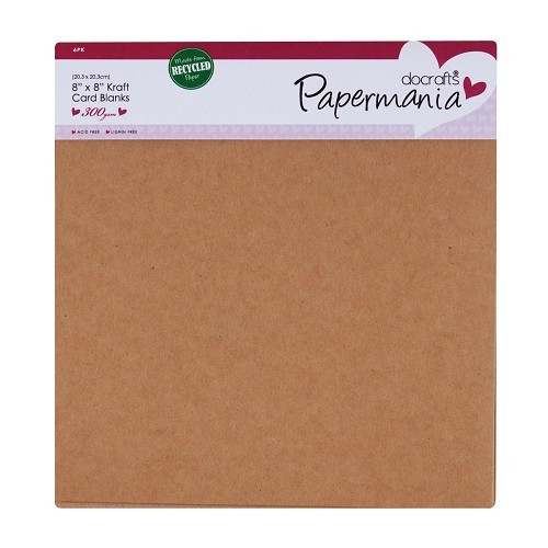 22162 A 6 pack of recycled Kraft 20,5x20,5 cm card blanks+ envelop.