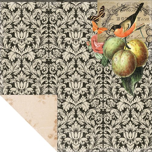 "24358 Kaisercraft Curiosity Double-Sided Cardstock 12""X12"" Peculiar."